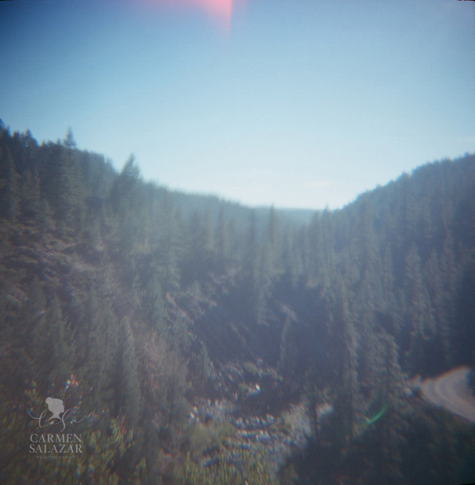 Plumas National Forest photo with Diana camera