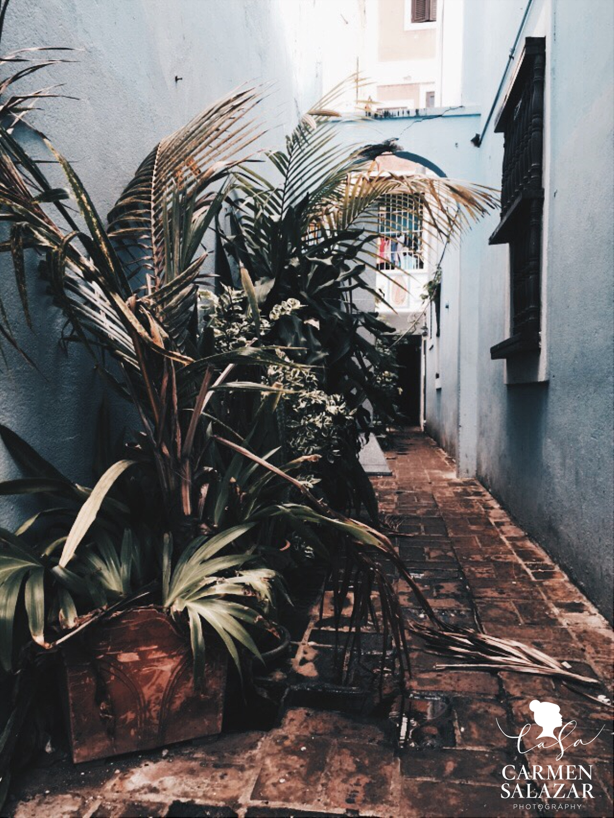 Puerto Rico Destination Photographer with VSCOcam with hb2 preset