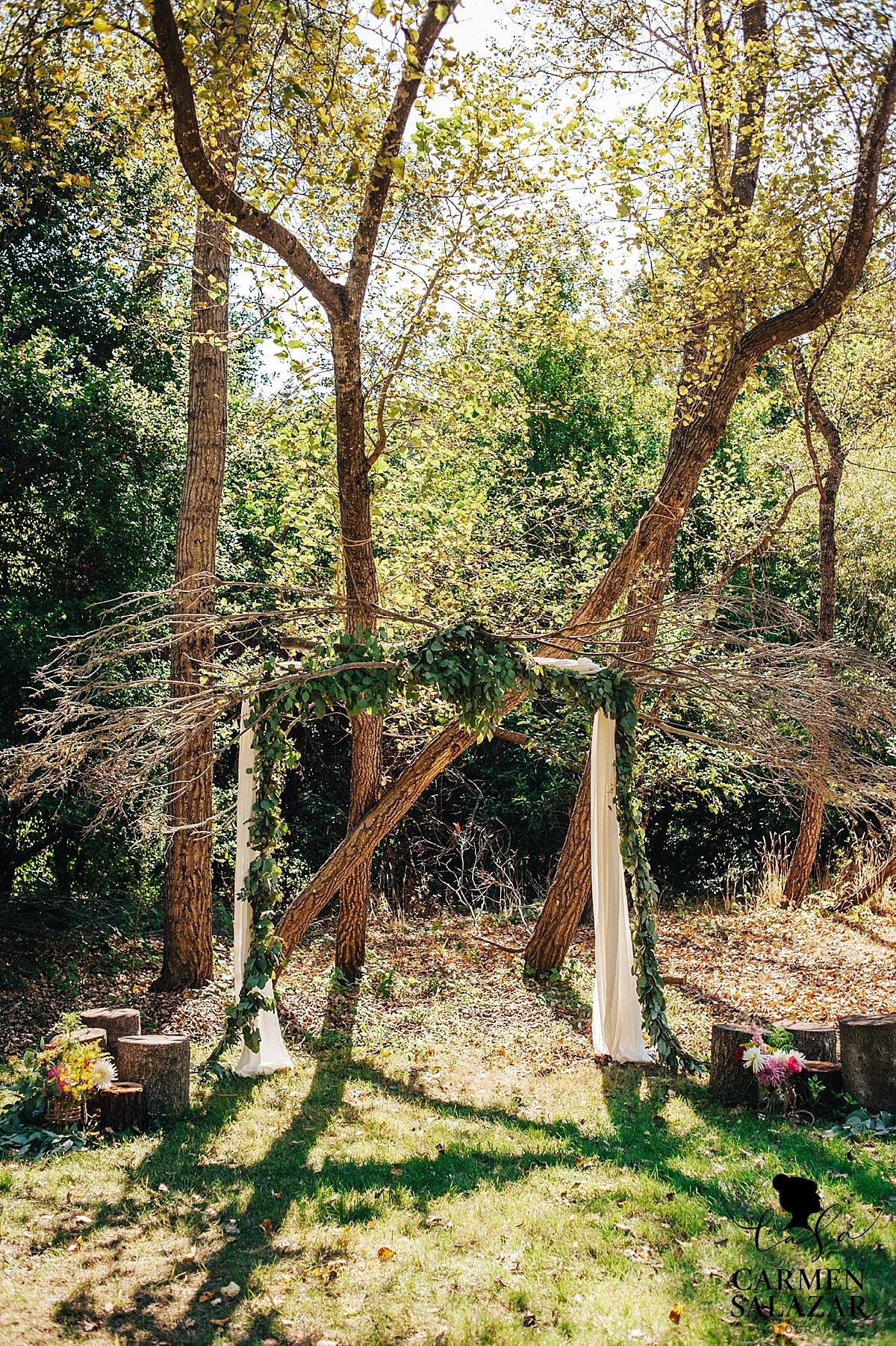 Unique natural foliage wedding arbor - Carmen Salazar