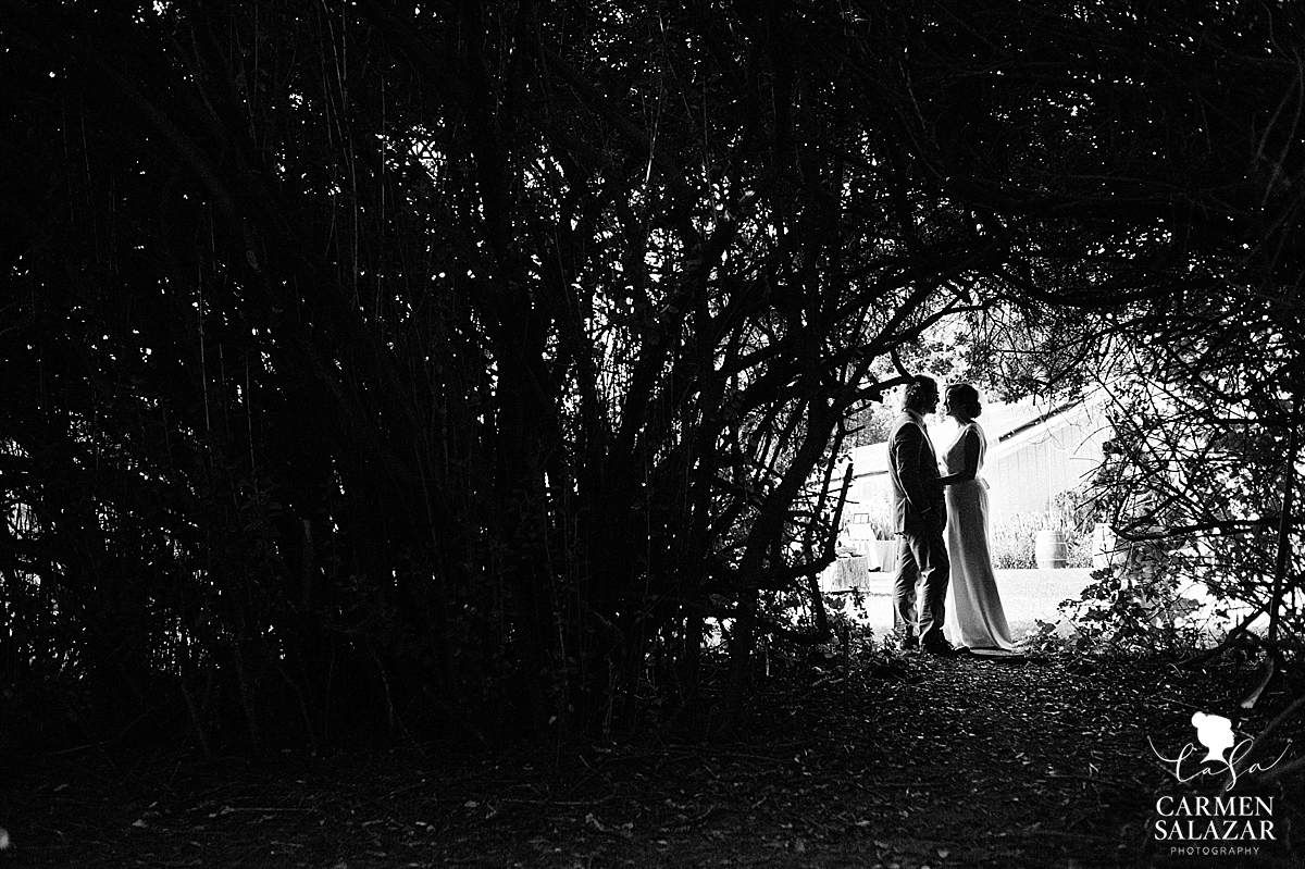 Dramatic bride and groom outdoor silhouette in black and white - Carmen Salazar