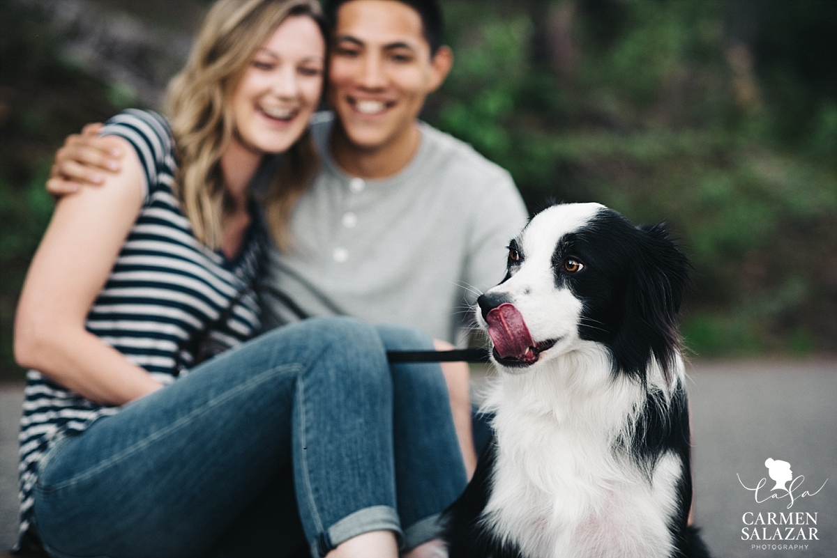 Pet-friendly engagement photographer - Carmen Salazar